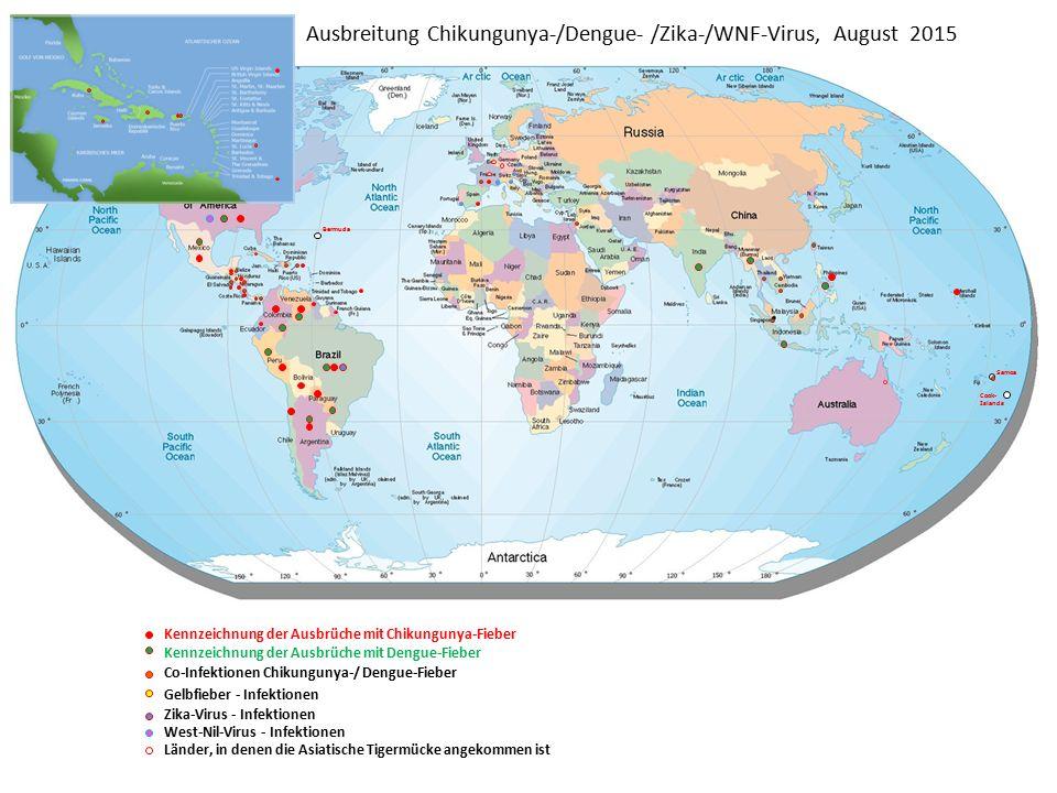 Ausbreitung Chikungunya-/Dengue- /Zika-/WNF-Virus, August 2015