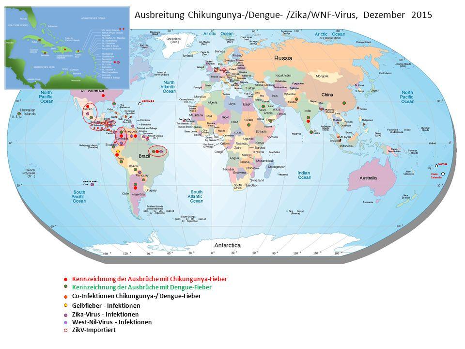 Ausbreitung Chikungunya-/Dengue- /Zika/WNF-Virus, Dezember 2015