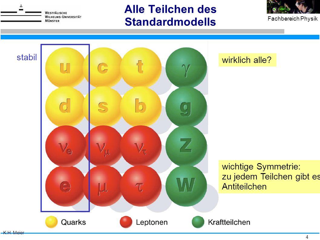 Alle Teilchen des Standardmodells
