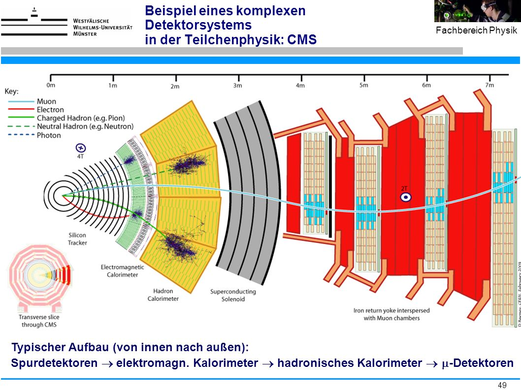 Beispiel eines komplexen Detektorsystems in der Teilchenphysik: CMS
