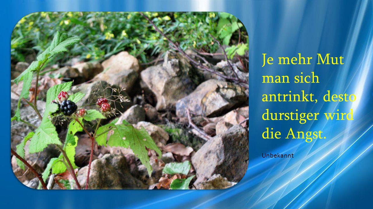 Je mehr Mut man sich antrinkt, desto durstiger wird die Angst.