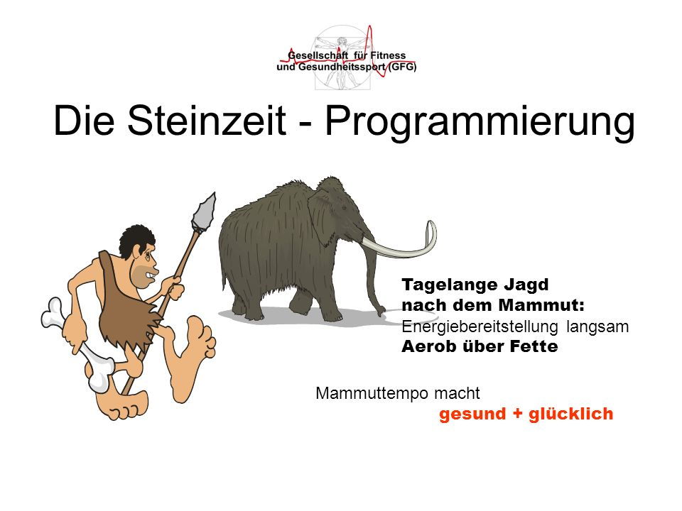 Die Steinzeit - Programmierung