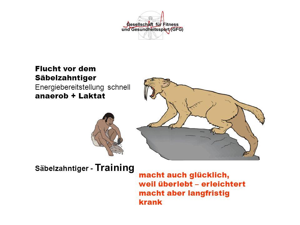 Flucht vor demSäbelzahntiger. Energiebereitstellung schnell. anaerob + Laktat. Säbelzahntiger - Training.
