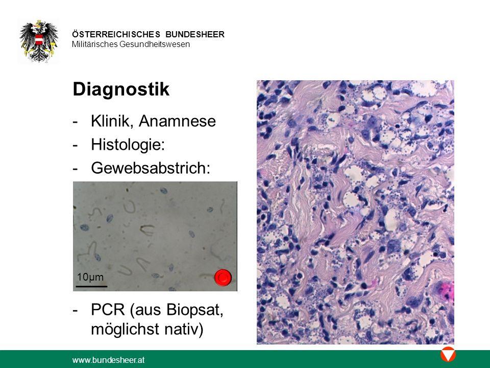 Diagnostik Klinik, Anamnese Histologie: Gewebsabstrich: