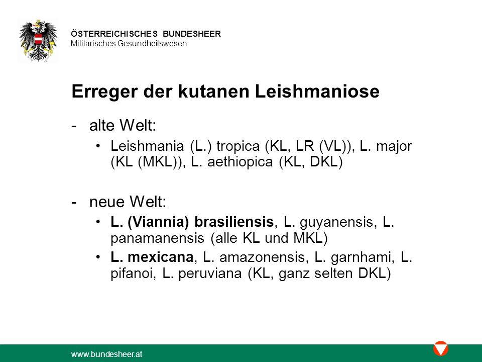 Erreger der kutanen Leishmaniose