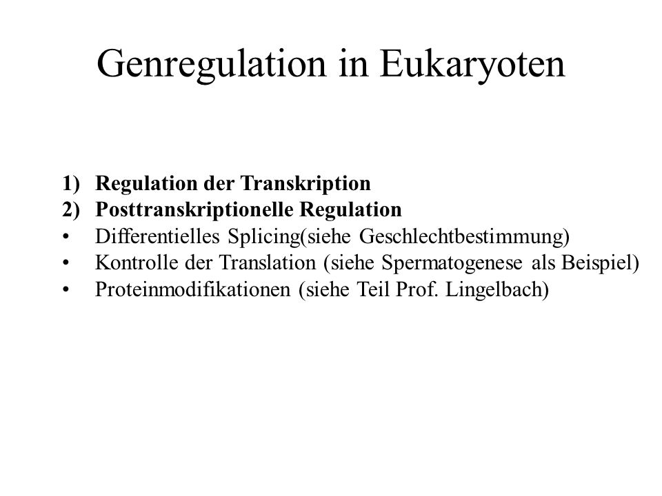 Genregulation in Eukaryoten