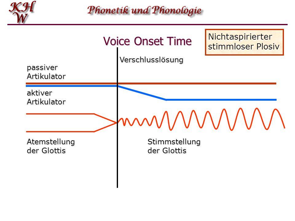Voice Onset Time Nichtaspirierter stimmloser Plosiv Verschlusslösung