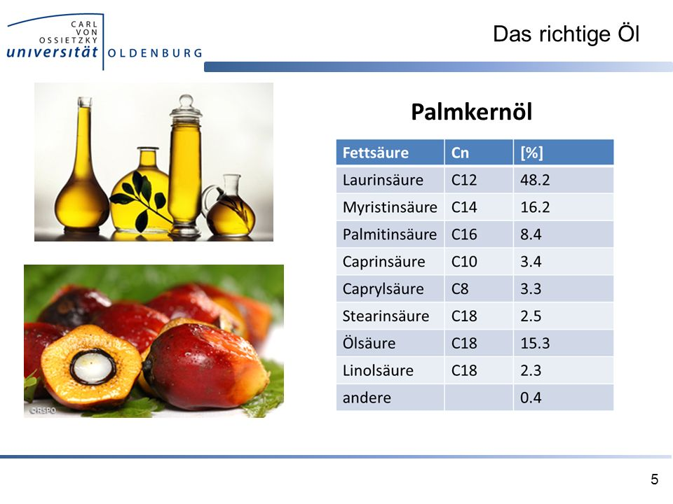 Palmkernöl Das richtige Öl