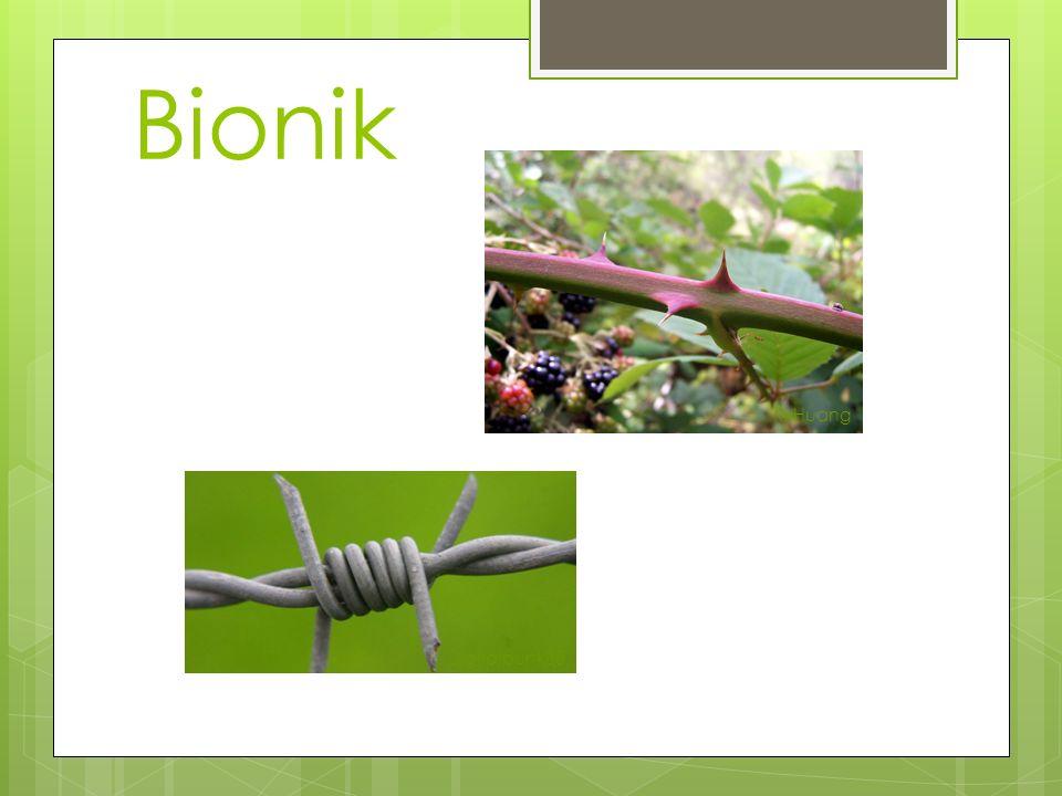 Bionik K. Huang Digitalpunk88