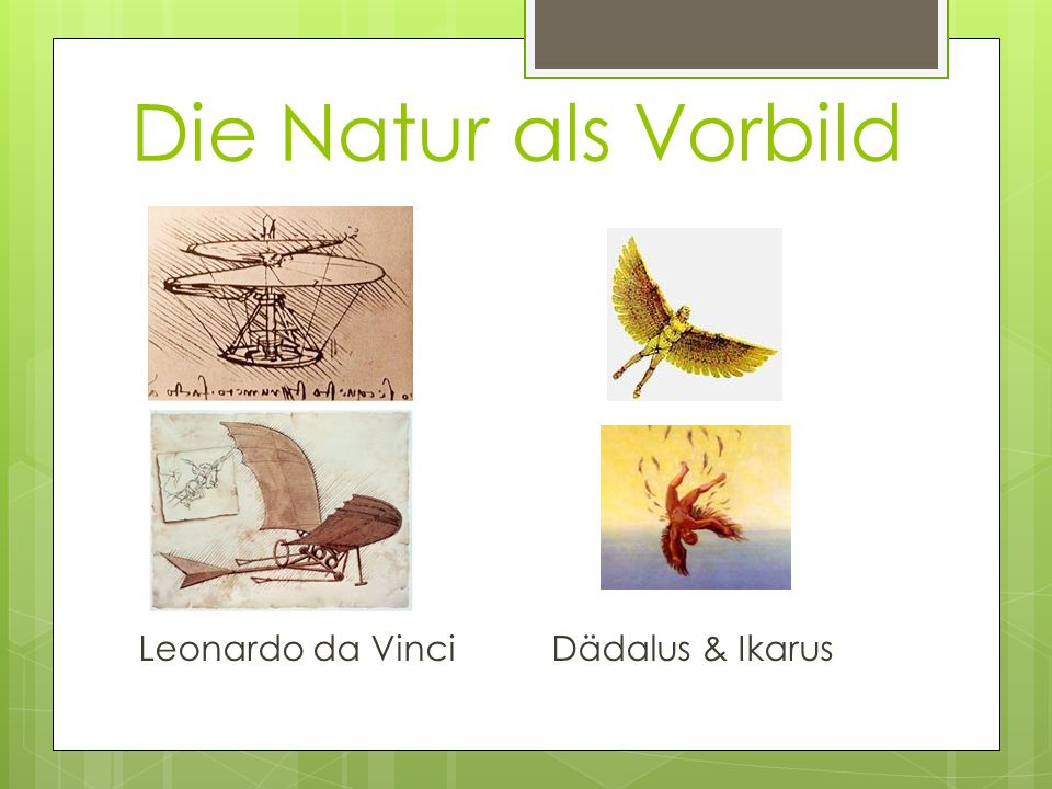 Die Natur als Vorbild Leonardo da Vinci Dädalus & Ikarus