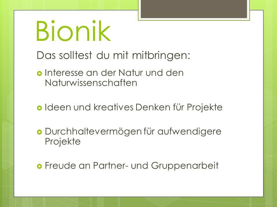 Bionik Das solltest du mit mitbringen: