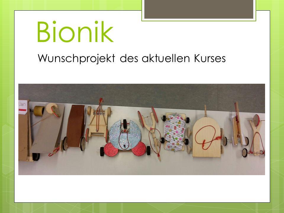 Bionik Wunschprojekt des aktuellen Kurses