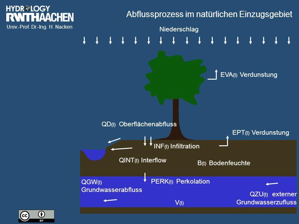 Abflussprozess im natürlichen Einzugsgebiet