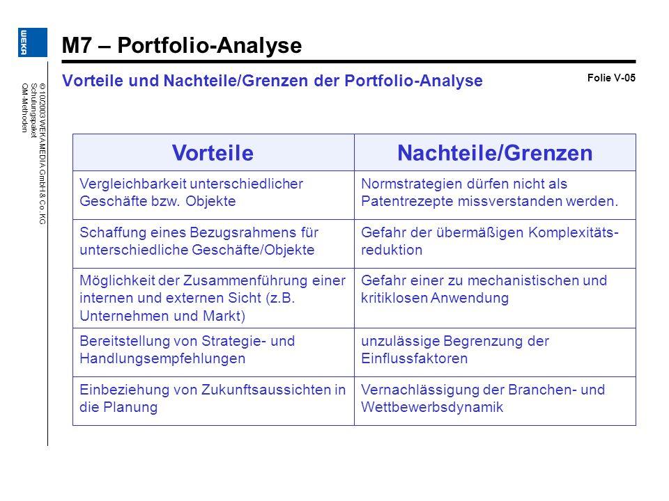 Vorteile und Nachteile/Grenzen der Portfolio-Analyse