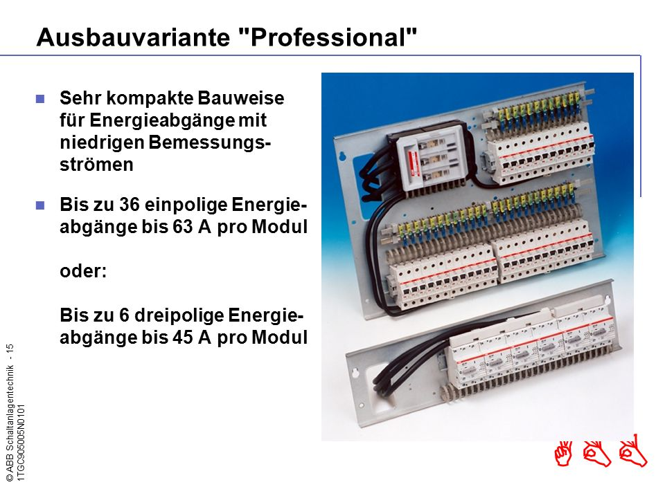 Ausbauvariante Professional