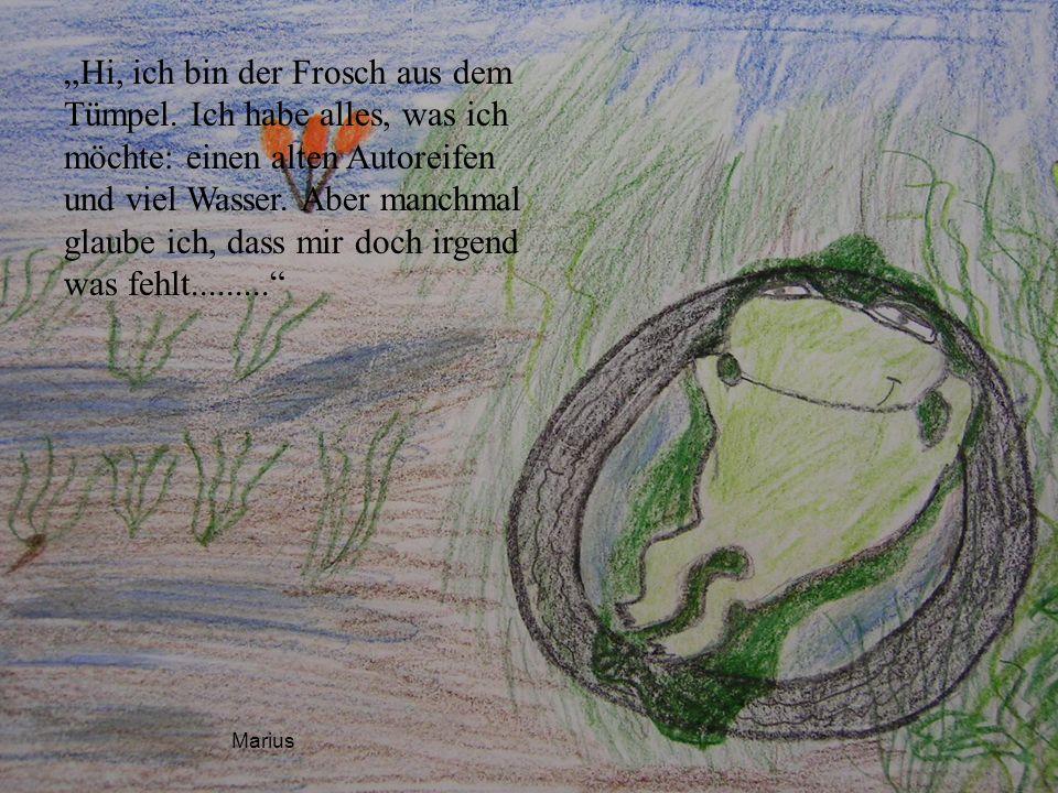 """Hi, ich bin der Frosch aus dem Tümpel"