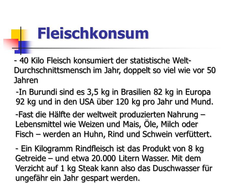 Fleischkonsum 40 Kilo Fleisch konsumiert der statistische Welt-Durchschnittsmensch im Jahr, doppelt so viel wie vor 50 Jahren.