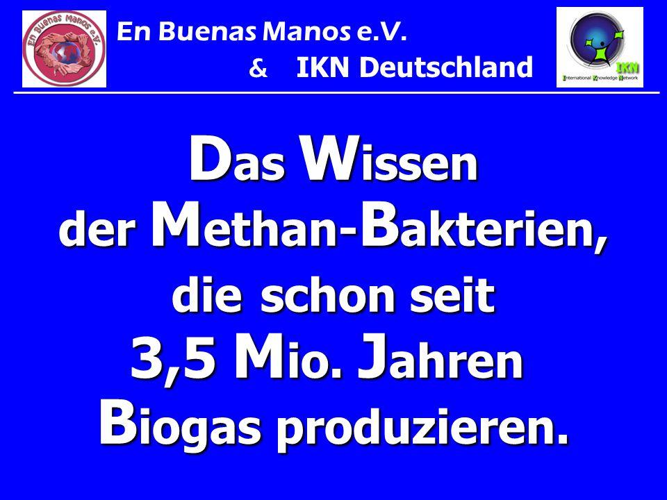 Das Wissen der Methan-Bakterien,