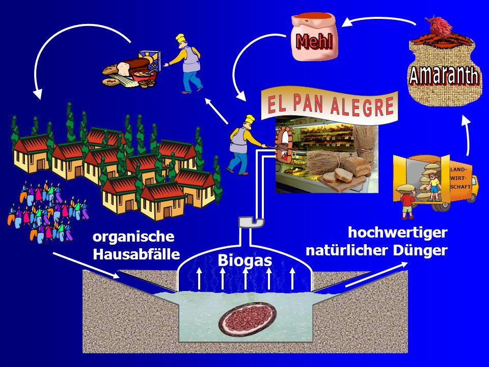 Biogas hochwertiger organische Hausabfälle natürlicher Dünger