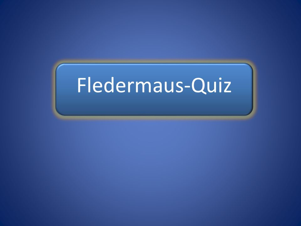 Fledermaus-Quiz Fledermaus-Quiz Fledermaus-Quiz