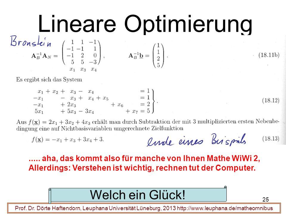 Lineare Optimierung Welch ein Glück!