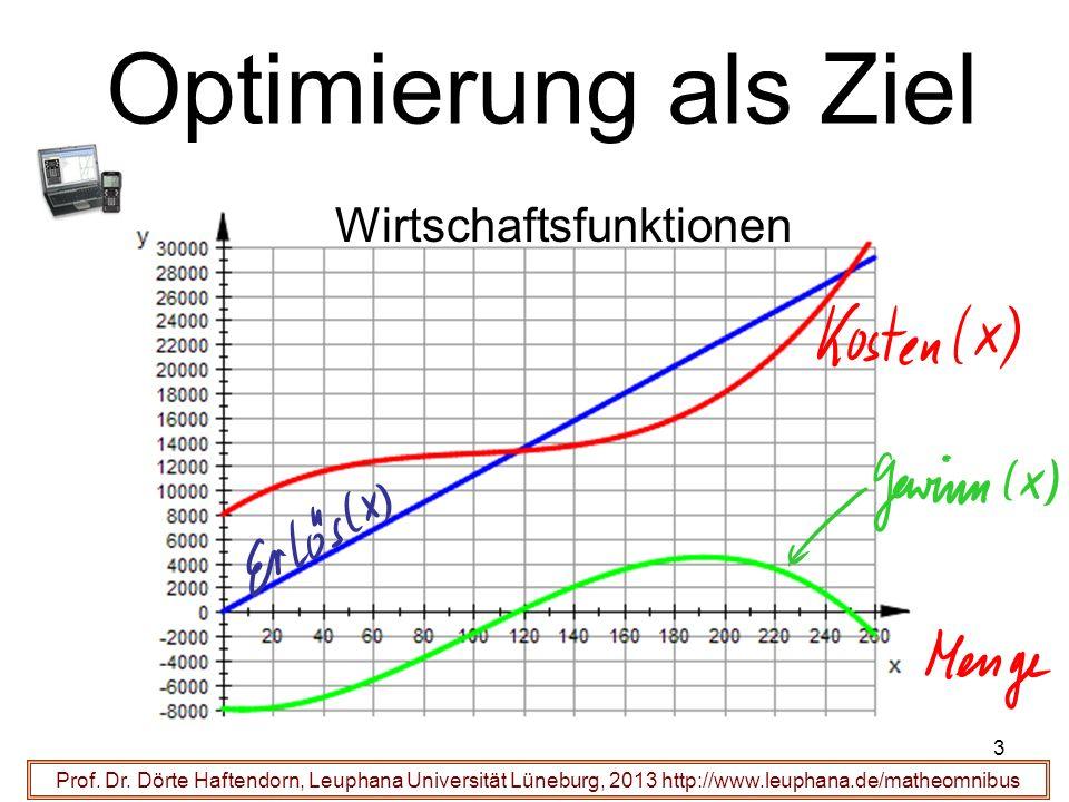 Optimierung als Ziel Wirtschaftsfunktionen