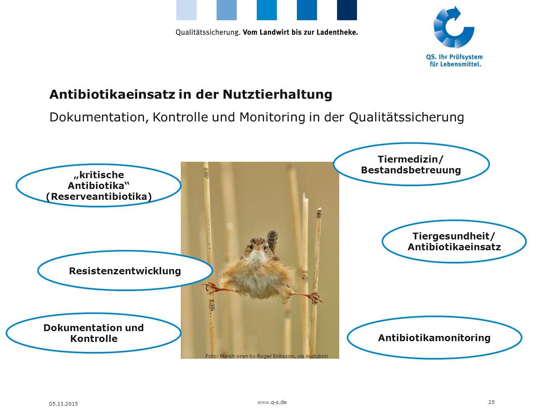 Antibiotikaeinsatz in der Nutztierhaltung