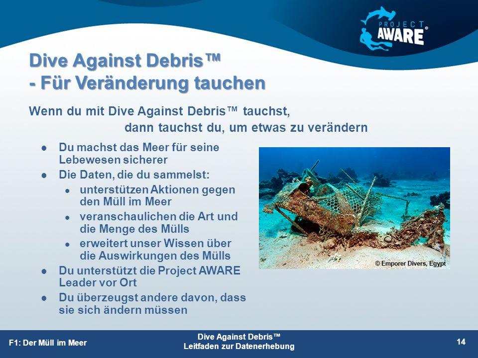 Dive Against Debris™ - Für Veränderung tauchen