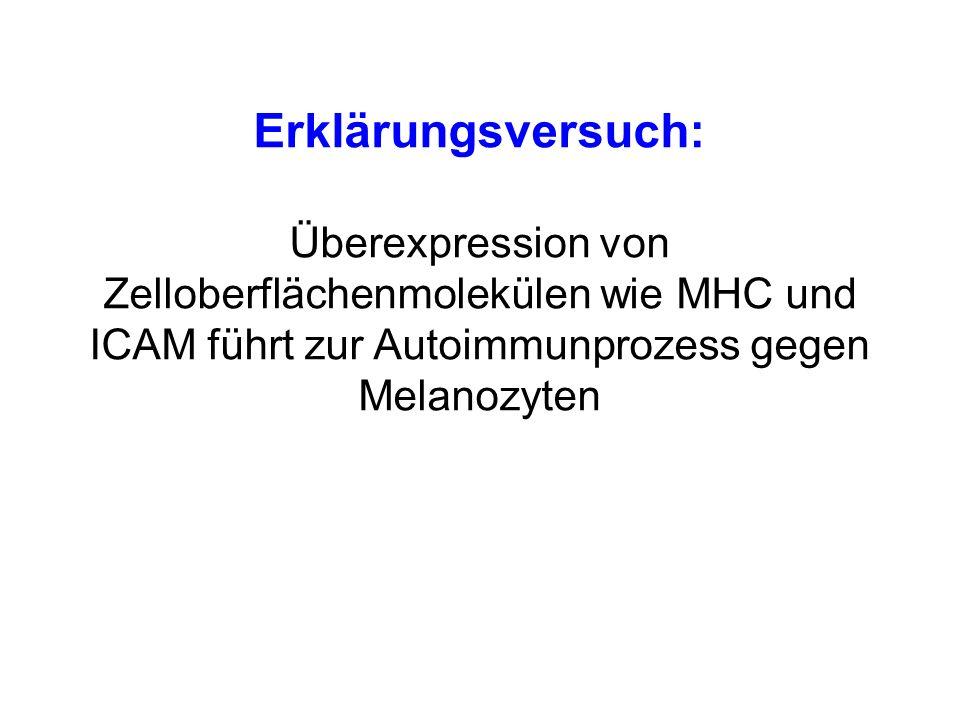 Erklärungsversuch: Überexpression von Zelloberflächenmolekülen wie MHC und ICAM führt zur Autoimmunprozess gegen Melanozyten.