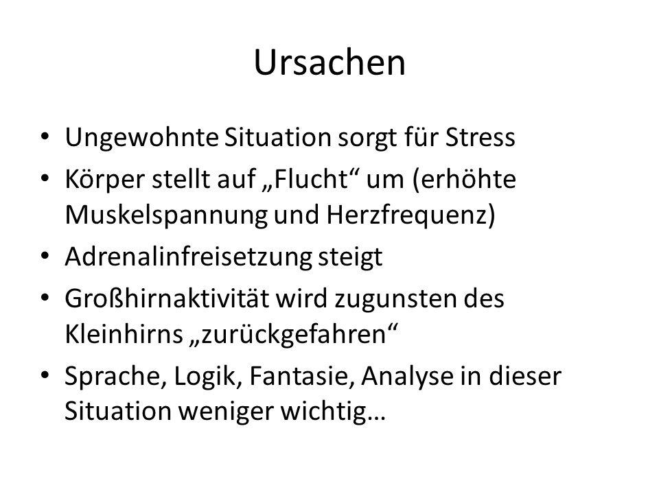 Ursachen Ungewohnte Situation sorgt für Stress