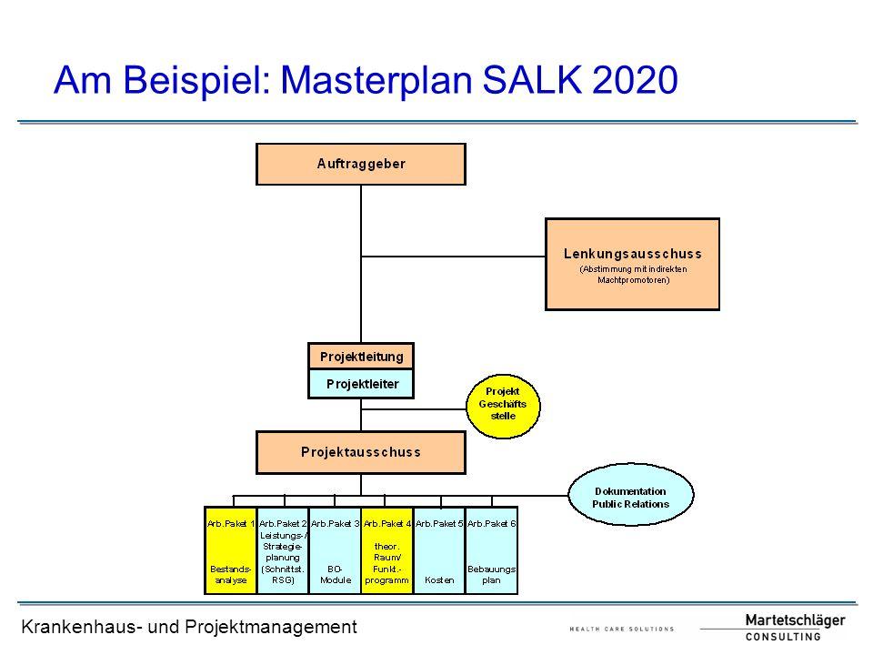 Am Beispiel: Masterplan SALK 2020
