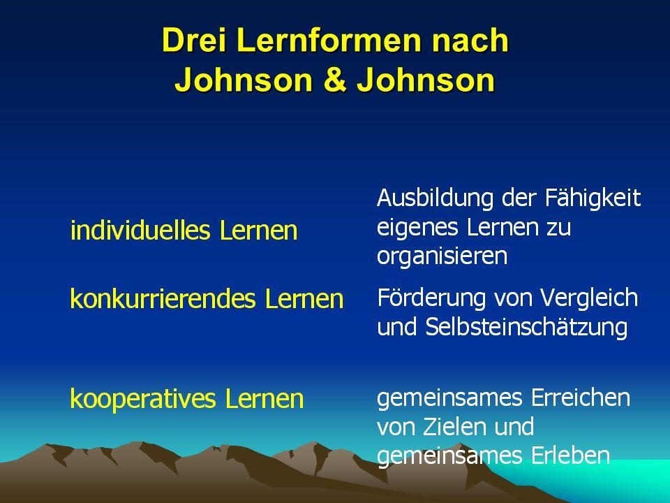 Drei Lernformen nach Johnson & Johnson