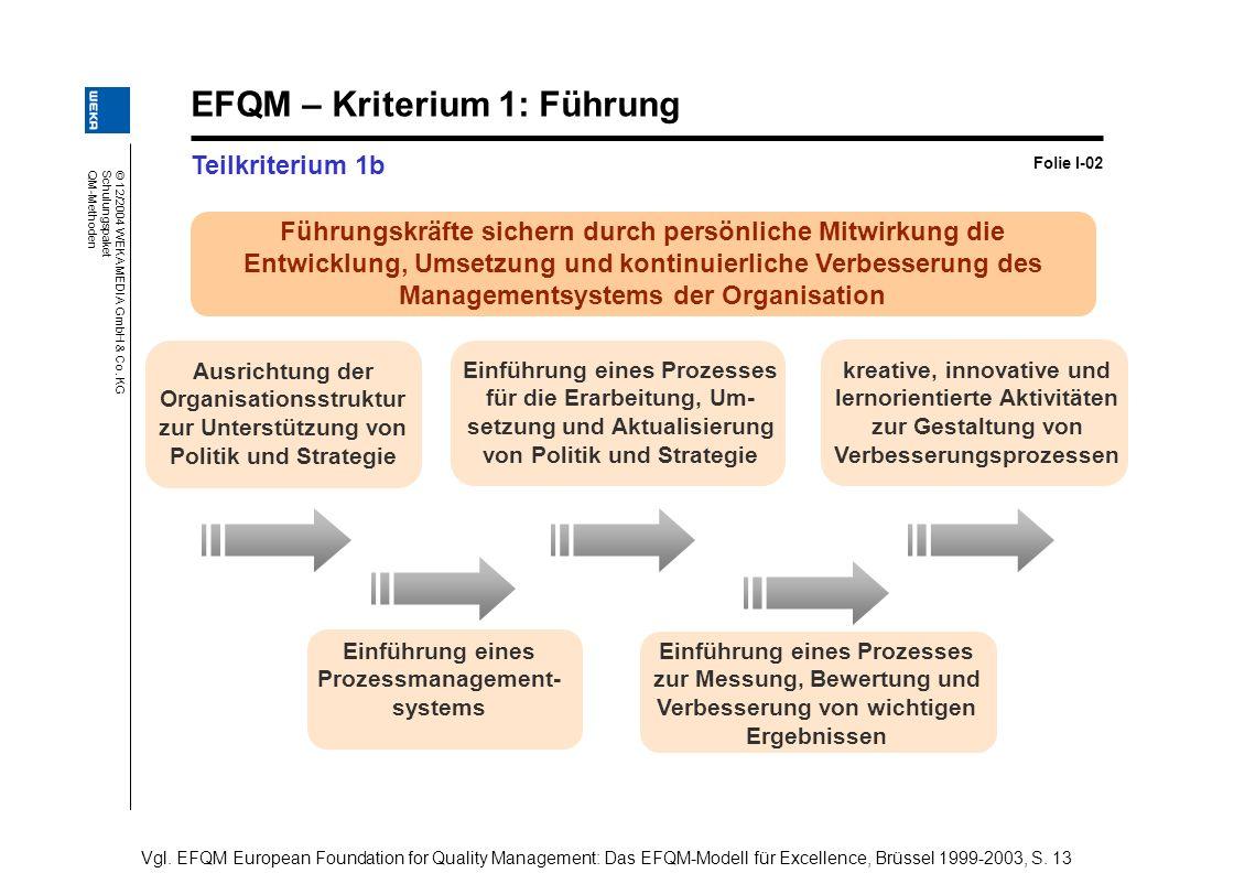 Einführung eines Prozessmanagement- systems