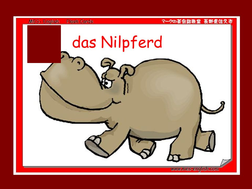 das Nilpferd