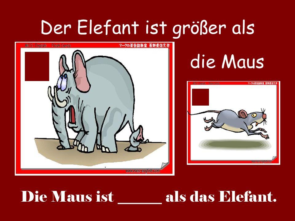 Der Elefant ist größer als
