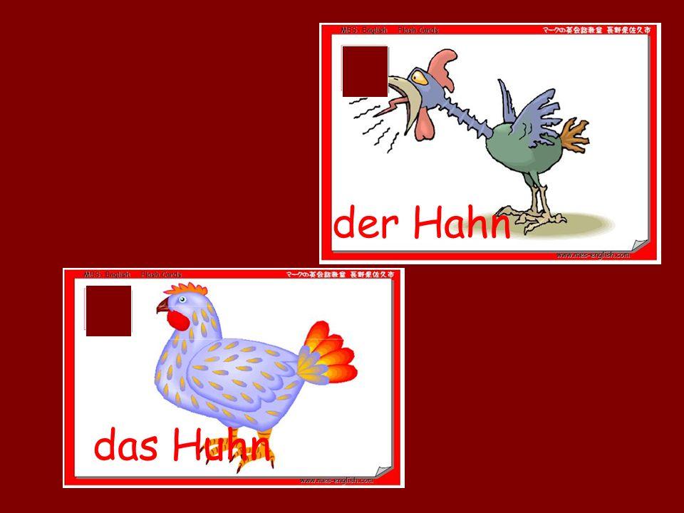 der Hahn das Huhn