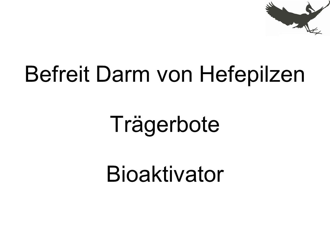 Befreit Darm von Hefepilzen Trägerbote Bioaktivator