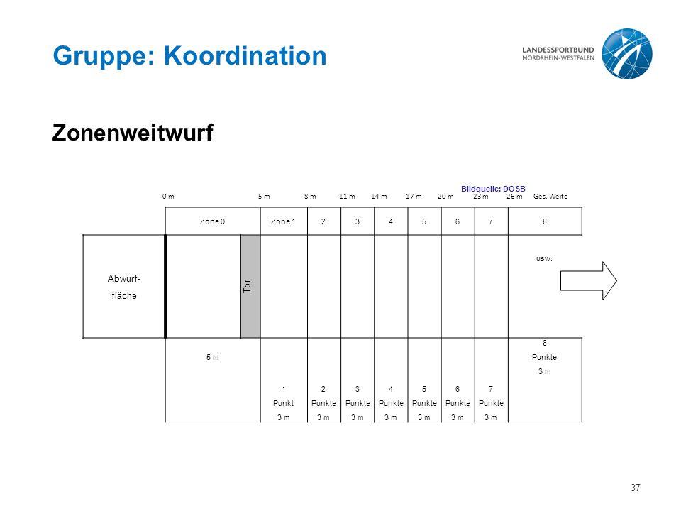 Gruppe: Koordination Zonenweitwurf