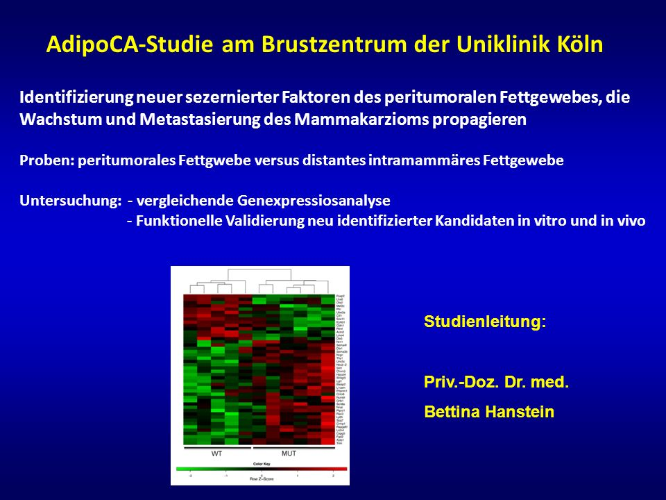 AdipoCA-Studie am Brustzentrum der Uniklinik Köln