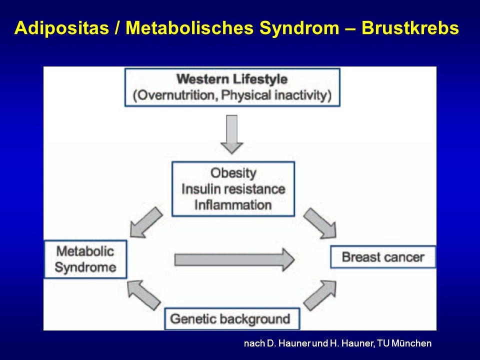 Adipositas / Metabolisches Syndrom – Brustkrebs