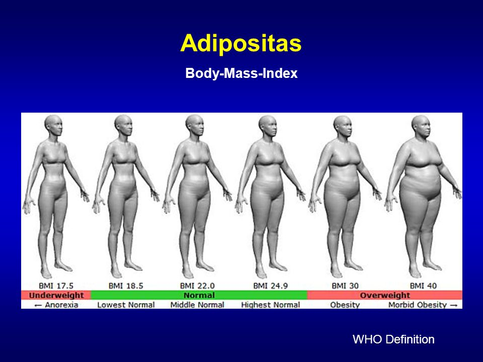 Adipositas Body-Mass-Index WHO Definition