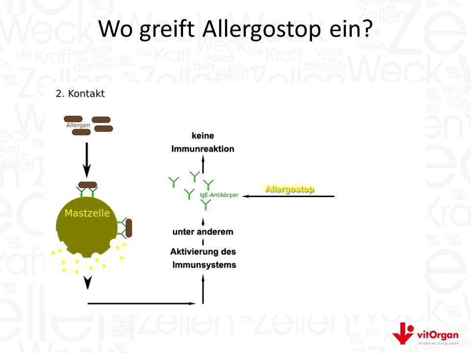 Wo greift Allergostop ein