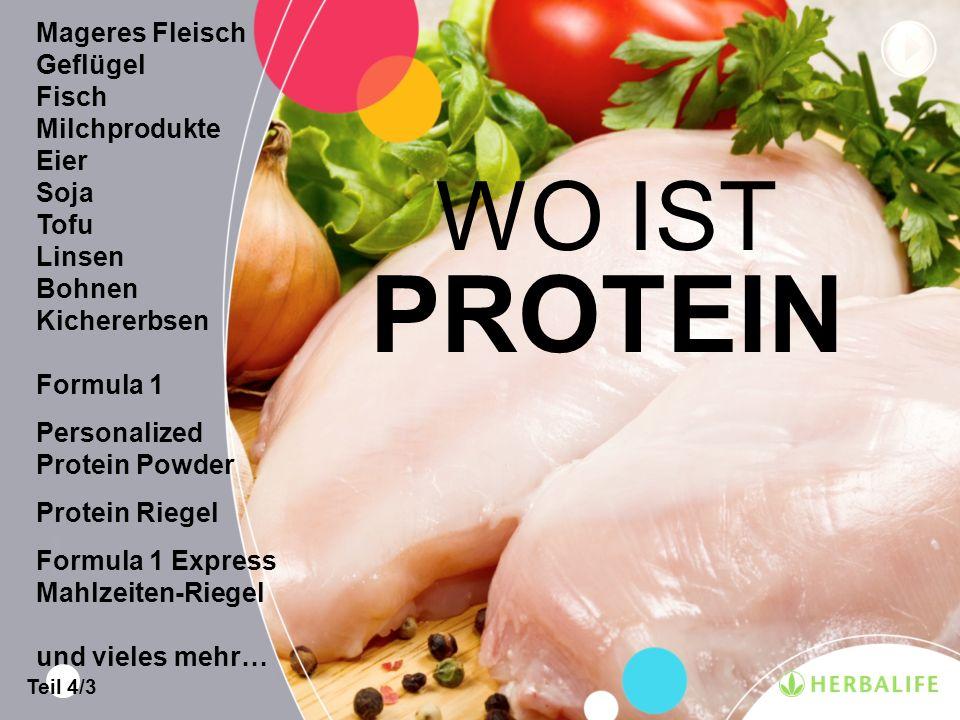 PROTEIN WO IST Mageres Fleisch Geflügel Fisch Milchprodukte Eier Soja