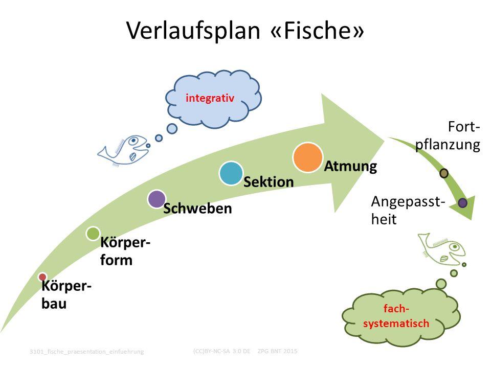 Verlaufsplan «Fische»