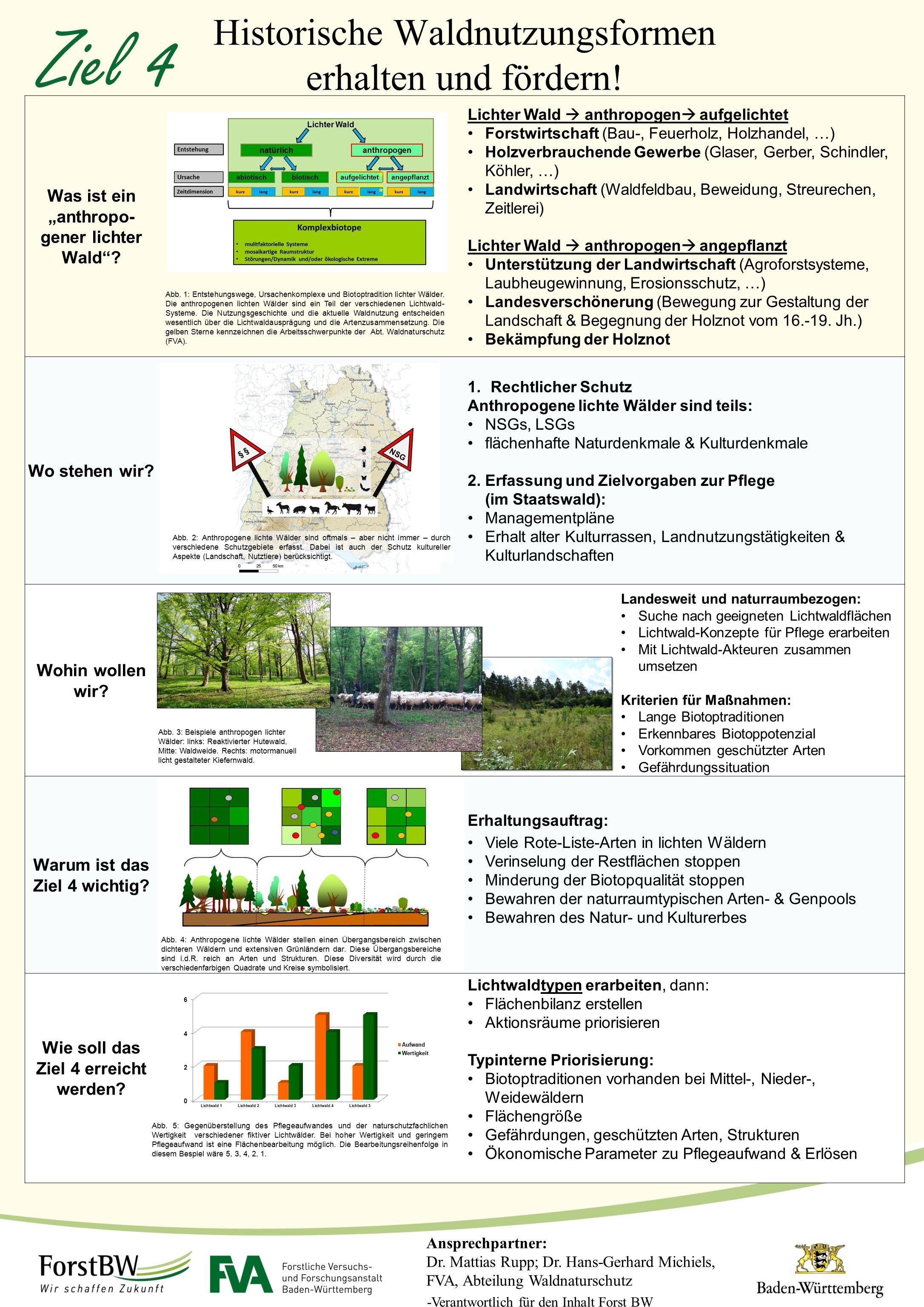 Ziel 4 Historische Waldnutzungsformen erhalten und fördern!