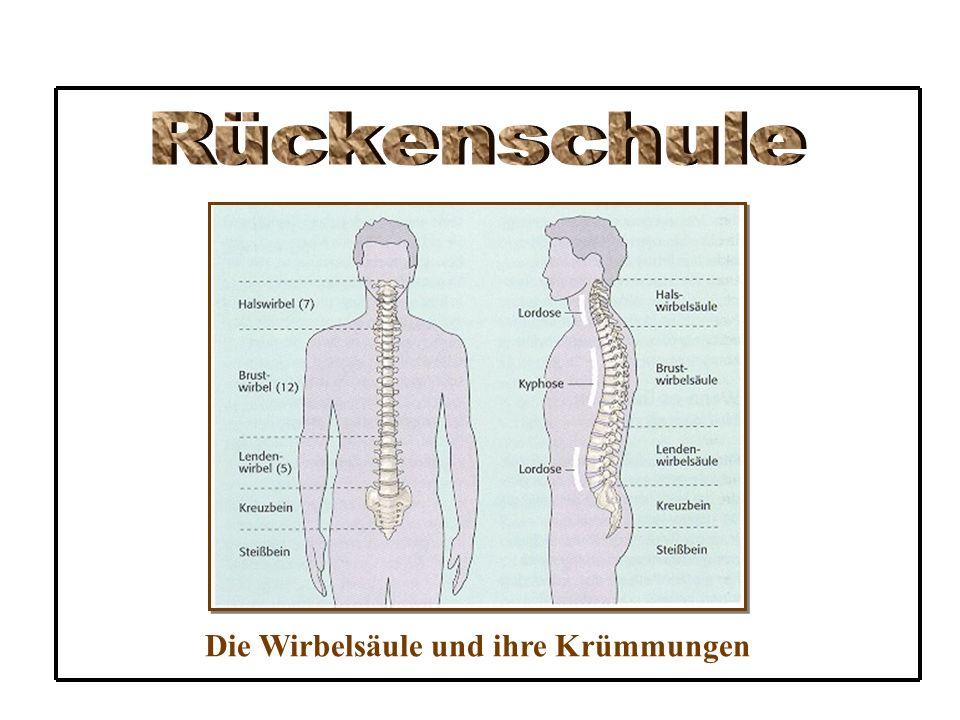 Rückenschule Die Wirbelsäule und ihre Krümmungen