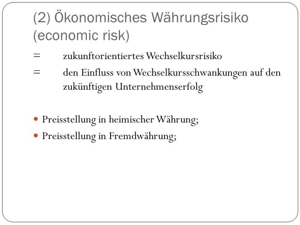 (2) Ökonomisches Währungsrisiko (economic risk)