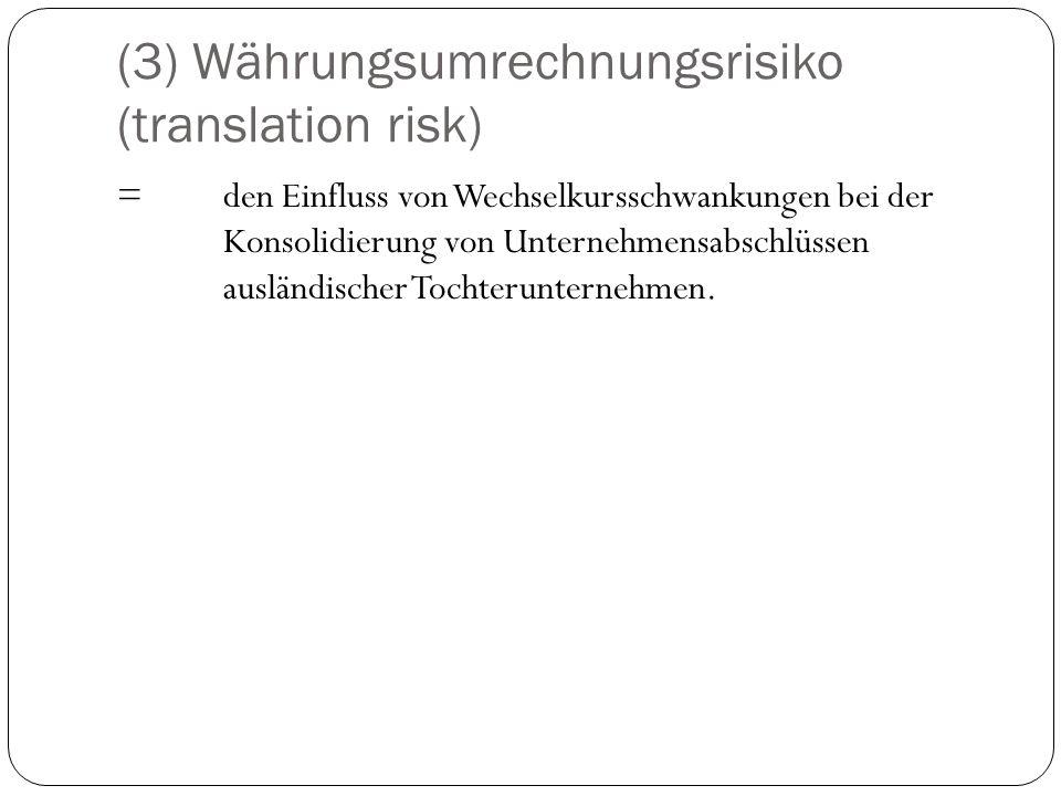 (3) Währungsumrechnungsrisiko (translation risk)
