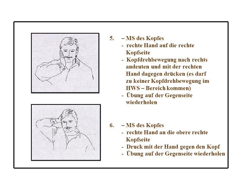 – MS des Kopfes - rechte Hand auf die rechte. Kopfseite. - Kopfdrehbewegung nach rechts. andeuten und mit der rechten.