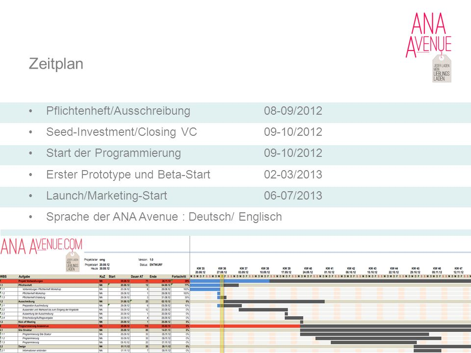 Zeitplan Pflichtenheft/Ausschreibung 08-09/2012
